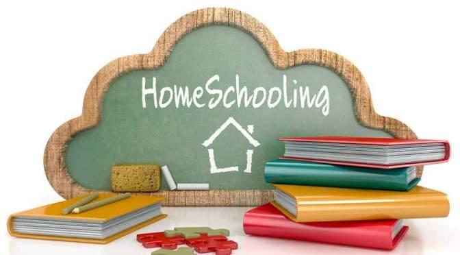 Homeschooling Gem 2: Curriculum is like a chicken!